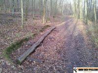 vita-parcours-uechtelhausen-16