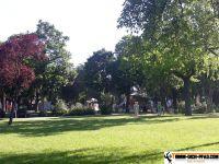 Fitnesspark_Wiener_Neustadt_17