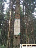 trimm-dich-pfad-schwenningen-15