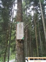 trimm-dich-pfad-schwenningen-26