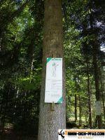 trimm-dich-pfad-schwenningen-23