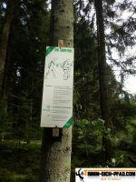 trimm-dich-pfad-schwenningen-11