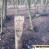 trimm-dich-pfad-mooswald-seehau-1