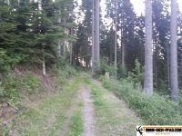 trimmpfad-pfalzgrafenweiler-14