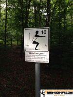 waldsportpfad_dietlingen_18
