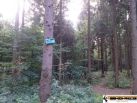 trimm-dich-pfad-buchholz-9