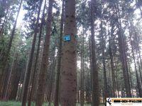 trimm-dich-pfad-buchholz-22