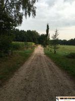 trimm-dich-pfad-hanstedt_03
