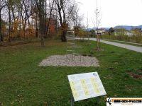 fittnessparcours-rosenheim-10