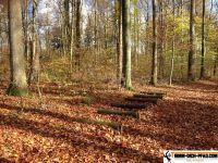 Trimm-Parcours-Brunnenfeld 32