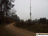 Trimm-Dich-Pfad-Tegernheim29