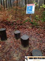 Trimm-Dich-Parcours-Galgenberg3