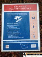 Trimm-Dich-Parcours-Galgenberg8