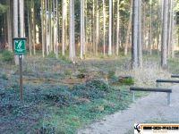 Trimm-Dich-Pfad-Friedberg15