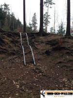 Waldsportplatz-Stöcken3