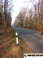 Trimm-Dich-Pfad-Altenburg2