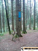 trimm-dich-pfad-babenhausen_17