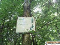 active-trail-wildpark-7