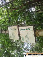 active-trail-wildpark-5