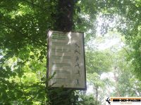 active-trail-wildpark-12