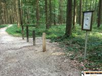 waldsportpfad_auernheim_17