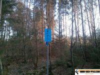 trimmd-ich-pfad-gruenwald-27