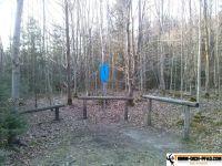 trimmd-ich-pfad-gruenwald-4