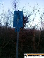 trimmd-ich-pfad-gruenwald-15