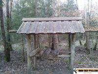 trimmd-ich-pfad-gruenwald-2