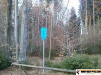 trimmd-ich-pfad-gruenwald-43