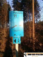 trimmd-ich-pfad-gruenwald-13