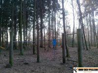 trimmd-ich-pfad-gruenwald-7