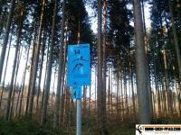 trimmd-ich-pfad-gruenwald-19