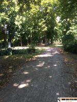 trimm_dich_pfad_schillerpark_05