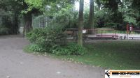 Trimm-Dich-Parcours_luisenpark_mannheim_12