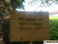 trimm-dich-pfad-waging_40