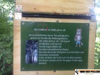 trimm-dich-pfad-waging_03