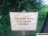 trimm-dich-pfad-waging_24