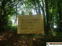 trimm-dich-pfad-waging_32