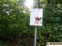 sportpark_stadtpark_neunkirchen_03