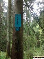 trimm-dich-pfad_furtwangen_13