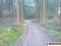 trimm-dich-pfad-bachern-31