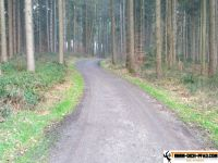 trimm-dich-pfad-bachern-29