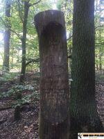 trimm_dich_pfad_berlin_huettenweg_12