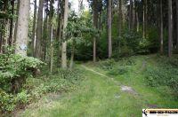 trimm-dich-pfad-pfaffenhofen41