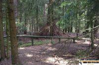 trimm-dich-pfad-pfaffenhofen26