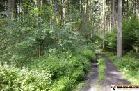 trimm-dich-pfad-pfaffenhofen39
