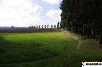 trimm-dich-pfad-pfaffenhofen43