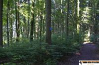waldsportpark-ebersberg53