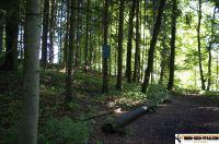 waldsportpark-ebersberg73
